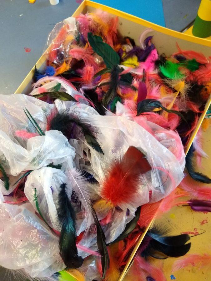 Papagaien (6)